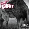 DJ HAZE - Sweet Love (unofficial mixtape)