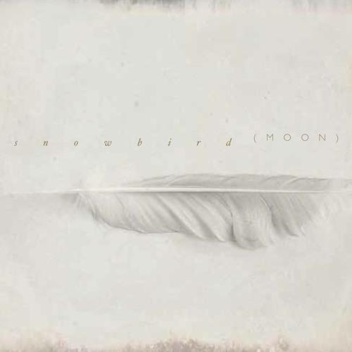 Snowbird - Porcelain