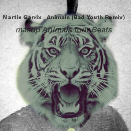 Martin Garrix   Animals (Bad Youth Remix)masup Animals for Beats