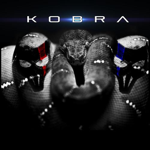 The Moogs -Kobra (original mix )