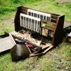 Organ Harvest - SweetHertz