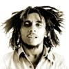 Bob Marley Exodus (Vegas RMX)