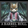 Do A Barrel Roll !!