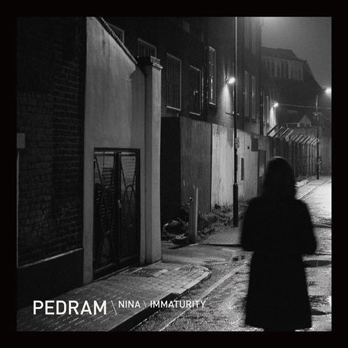 Pedram - Nina (Born Electric) (Clip For Soundcloud)