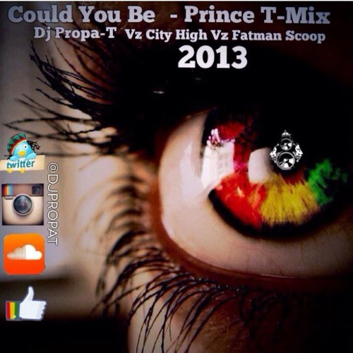 PRINCE [T - MIX] COULD YOU BE VZ DJ PROPA - T VZ CITY HIGH VZ FATMAN SCOOP