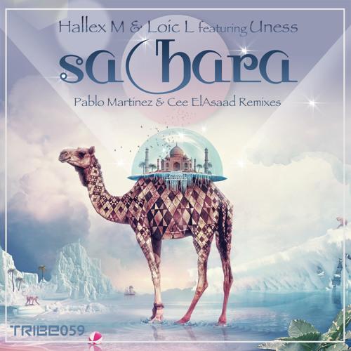 Hallex M & Loic L | 'Sahara' feat. Uness (Preview)
