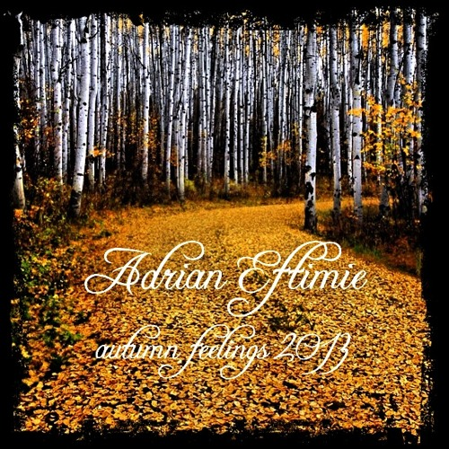 Adrian Eftimie - Autumn Feelings 2013
