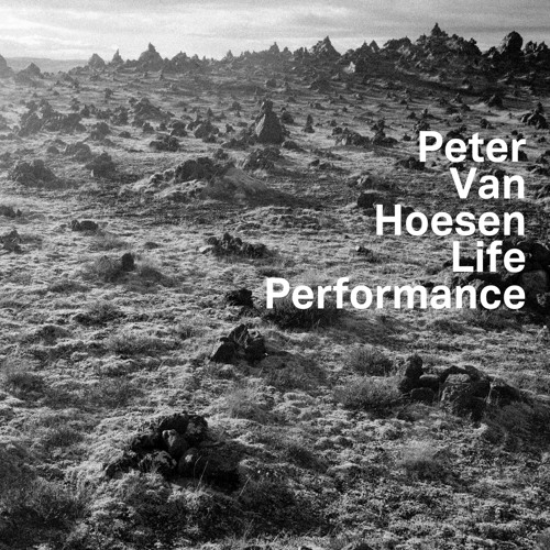 8. Peter Van Hoesen - Deceive Perform