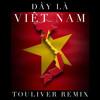 Triple D ft Rhymastic , Binz - Đây Là Việt Nam ( Touliver Remix )