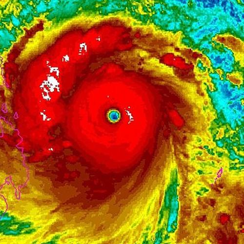 Haiyan (284/365)