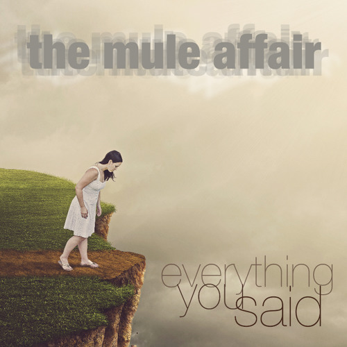 THE MULE AFFAIR - Everything you said