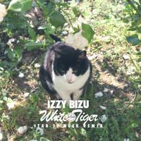 Izzy Bizu White Tiger (Star Slinger Remix) Artwork
