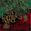 Lamb of God - The Faded Line Cover