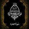 Download 02 - سُورَةُ البَقَرَة - ياسر الدوسري Mp3