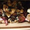 Dos Gardenias Angel Renteria Remixed 01demo