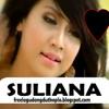 Secawan Madu (Karaoke)- Suliana