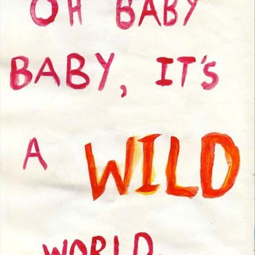 Wild World - Mr. Big (Cover) By Boncel