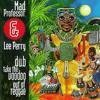 Drummer Boy Dub-Mad Professor&Lee Perry
