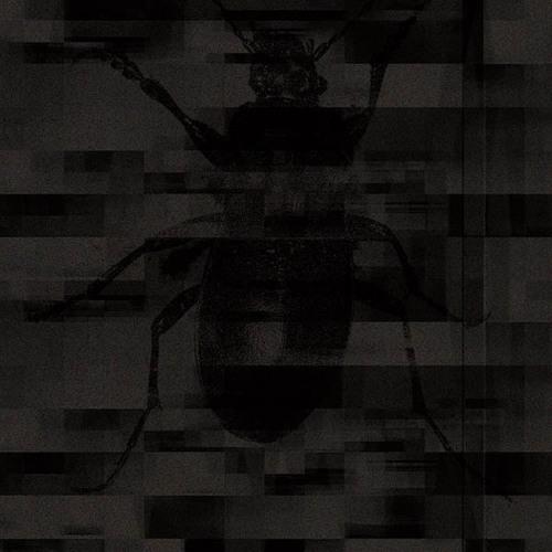 Kontext - Dreams of a reason [cut]