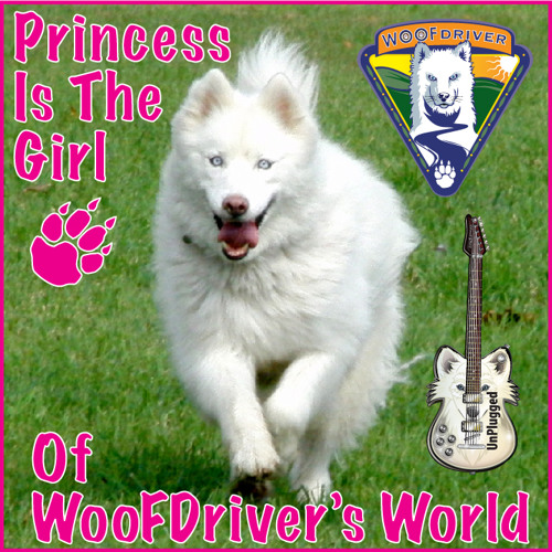 Princess Is The Girl - UnPlugged