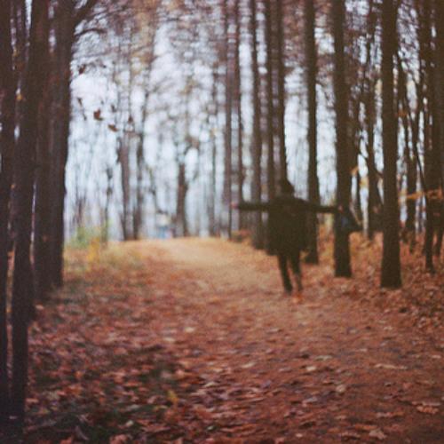 Les feuilles tombent, puis repoussent.