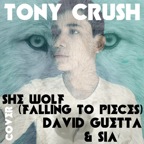 She Wolf (Falling To Pieces) [David Guetta & Sia Cover]