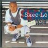 Skeelo - I wish somebody didn't make this polka version (spook en de klopgeesten remix)