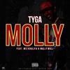 Tyga - Molly (Quinn Kyle Trap Remix)