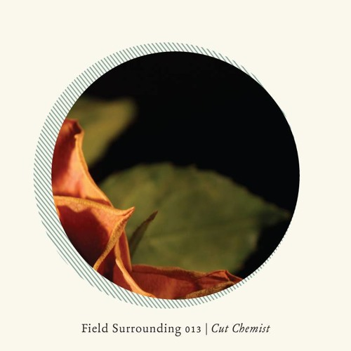 Field Surrounding 013 - Cut Chemist