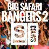 ROCK! (Original Mix) OUT NOW! [SAFARI MUSIC] mp3