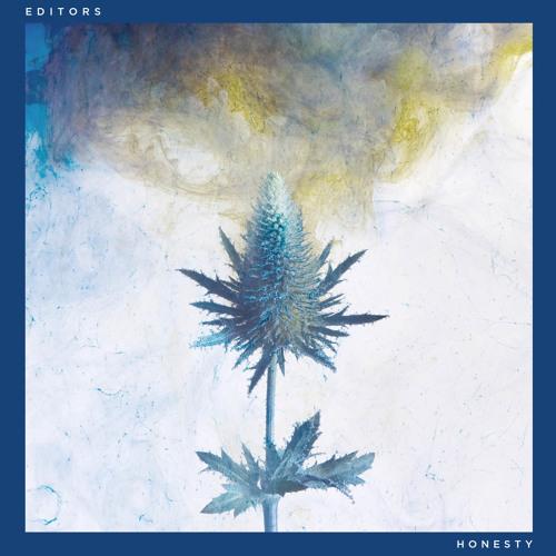 Editors - Honesty (Timothy J Fairplay Remix)