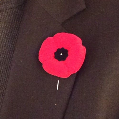 TDYR #047 - Remembrance Day And The Ubiquitous Canadian Poppy