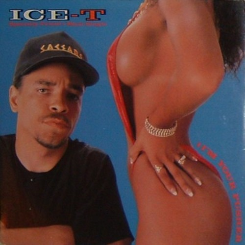 Ice - T - I'm Your Pusher (punktematrix Breaks Mix)