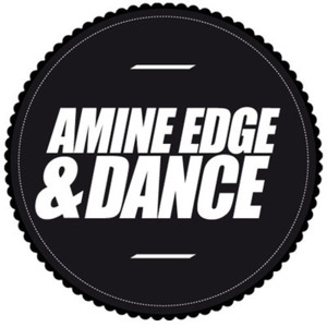 Pussy Magnet (Original Mix) by Amine Edge & DANCE Feat. O.D. Flash, Roach Gigz & Kreayshawn