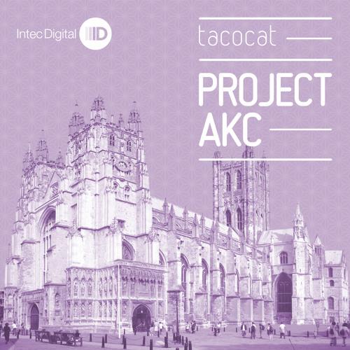 Project AKC - Tacocat (Original Mix) - ID046 web