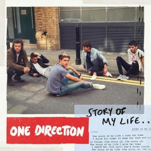 One Direction - Story Of My Life - Cover
