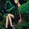 Vera Wang Fall-Winter 2013-14   (New York Fashion Week)