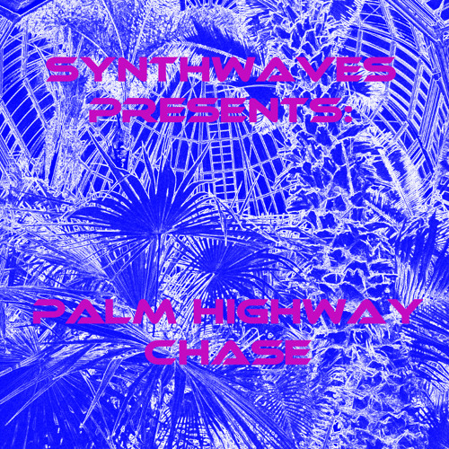 Synthwaves: Palm Highway Chase Interview