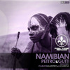 Pettro & Gutti - Namibian (Carlos Maestro & A. Garcia Remix) [DEMO]