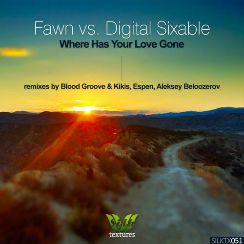 Fawn vs. Digital Sixable - Where Has Your Love Gone (Blood Groove & Kikis Remix) [Silk Textures]