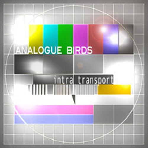 Analogue Birds - Intertransport