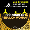 Bob Sinclar vs Joe Brunning - Now Let Me See You Work Sea Lion Woman (KevinF Reboot)