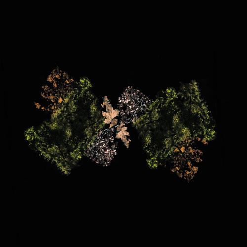 Woodsman - All Tangled Up