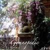 Gymnopedie No. 1 - Eric Satie (Straight)
