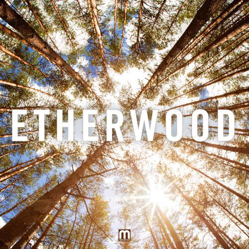 Etherwood - Amongst The Crowd