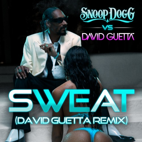 Snoop Dogg Vs. David Guetta - Wet (Embee Bootleg) // Preview 1