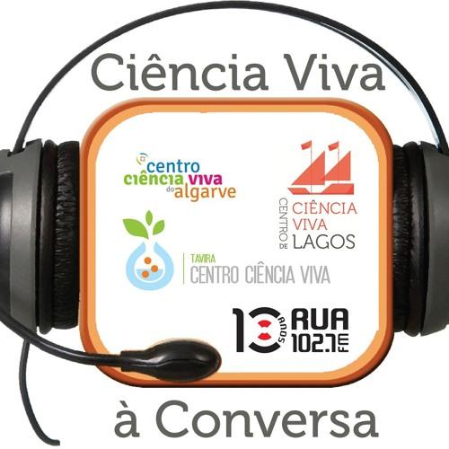 Patrícia Garcia Pereira e os Insectos (em Ordem) (1) | 11 Jul 2013