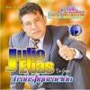 Julio Elias Trigo Soy