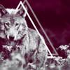 xKKBeats x Tinie Tempah ft. John Martin - Children Of The Sun RMX (w/HOOK)
