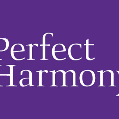 Dj Luuh Prod - Perfect Harmony (Original Mix)